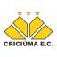 Criciúma Esporte Clube, team logo