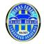 Puskas Akademia FC, team logo