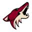 Аризона Койотис, эмблема команды