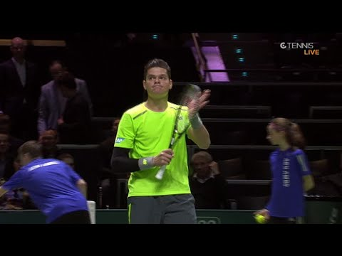 гоффин д теннис